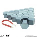 Wielmoerkapjes antraciet gelakt 17 mm set a 20 stuks met clip