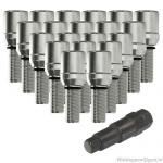 Schuifbouten set chroom M12x1.25 lengte 28 mm. 20 stuks met sleutel
