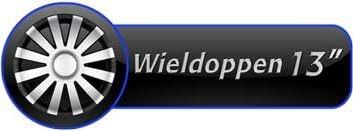 Wonderlijk Wieldoppengigant.nl: ruimste keuze in WIELDOPPEN op het web! NB-58