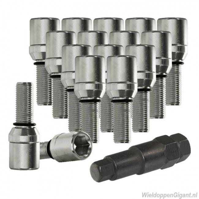 https://www.wieldoppengigant.nl/mwa/image/zoom/WieldoppenGigant-schuifbouten-set-chroom-m12x1-25-M12x1-5-M14x1-5-lengte-28-mm-16-stuks-met-sleutel.jpg