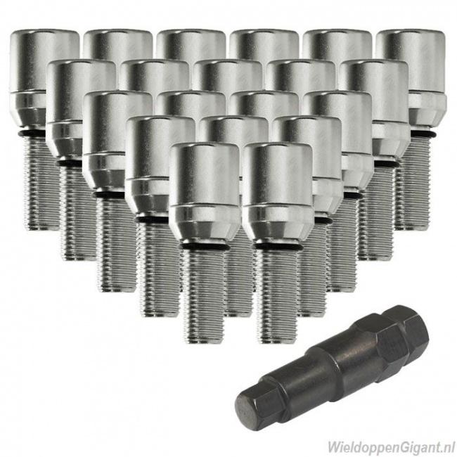 https://www.wieldoppengigant.nl/mwa/image/zoom/WieldoppenGigant-schuifbouten-set-chroom-m12x1-25-M12x1-5-M14x1-5-lengte-28-mm-20-stuks-met-sleutel.jpg